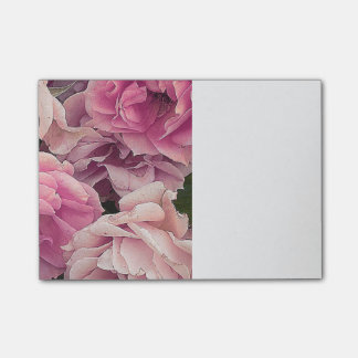Great garden roses, pink post-it notes