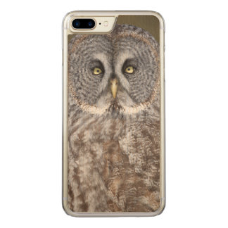Great gray owl close-up, Canada Carved iPhone 7 Plus Case