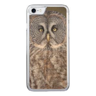 Great gray owl close-up, Canada Carved iPhone 8/7 Case