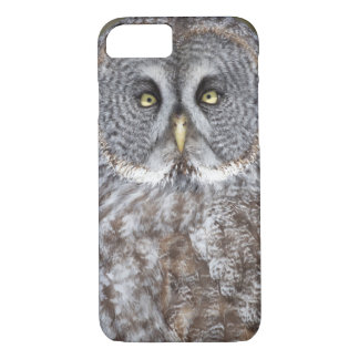 Great gray owl close-up, Canada iPhone 7 Case