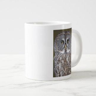 Great gray owl close-up, Canada Large Coffee Mug