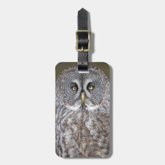 Great gray owl close-up, Canada Luggage Tag