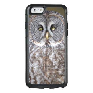 Great gray owl close-up, Canada OtterBox iPhone 6/6s Case