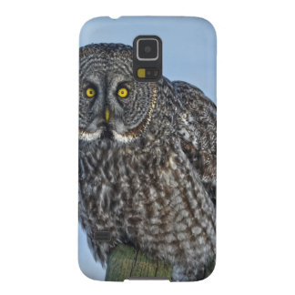 Great Gray Owl On a Fence Wildlife Photo Portrait Cases For Galaxy S5