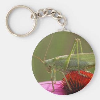 Great Green Bush-Cricket  (Tettigonia viridissima) Basic Round Button Keychain