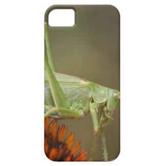 Great Green Bush-Cricket  (Tettigonia viridissima) Case For The iPhone 5