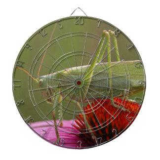 Great Green Bush-Cricket  (Tettigonia viridissima) Dartboard