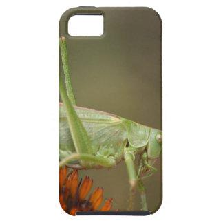 Great Green Bush-Cricket  (Tettigonia viridissima) iPhone 5 Covers