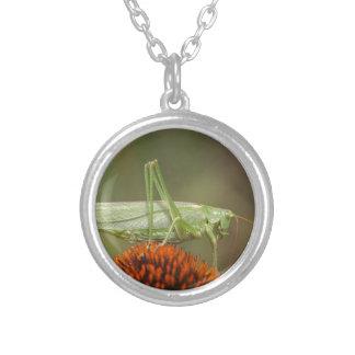Great Green Bush-Cricket  (Tettigonia viridissima) Silver Plated Necklace