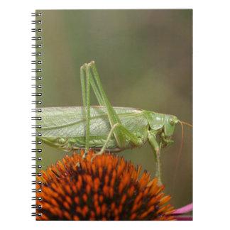 Great Green Bush-Cricket  (Tettigonia viridissima) Spiral Notebooks