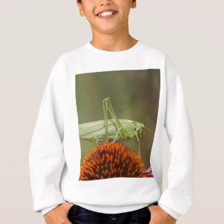 Great Green Bush-Cricket  (Tettigonia viridissima) Sweatshirt