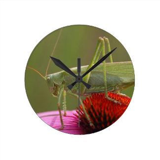 Great Green Bush-Cricket  (Tettigonia viridissima) Wallclock