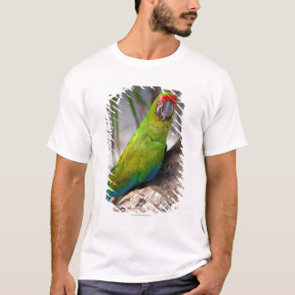Great green macaw on a tree T-Shirt