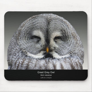Great Grey Owl Mouse Pad