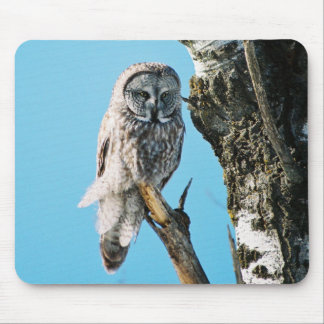 Great Grey Owl Mousepad