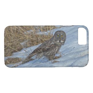 Great Grey Owl & Snow Wildlife Photo Portrait iPhone 8/7 Case