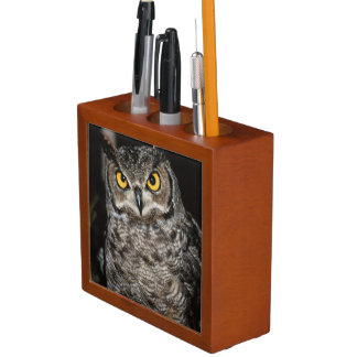 Great Horned Owl  2 Desk Organizer