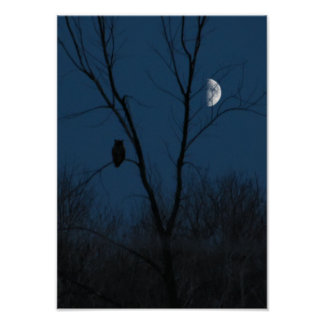 Great Horned Owl at Night Poster or Print