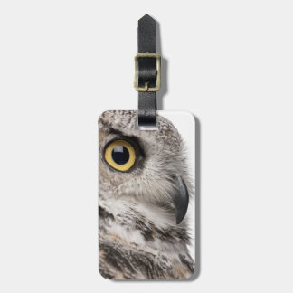 Great Horned Owl - Bubo Virginianus Subarcticus Luggage Tag