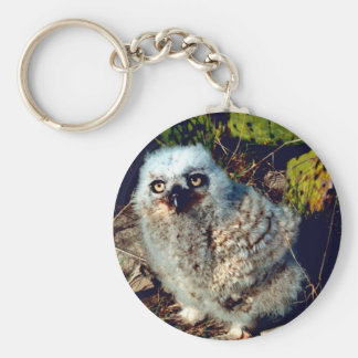 Great Horned Owl Chick Keychain