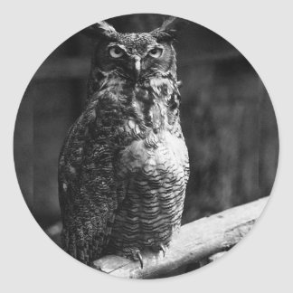 Great Horned Owl Classic Round Sticker