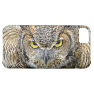 Great Horned Owl Following Eyes iPhone 5C Cases