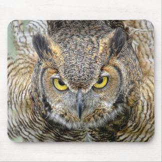 Great Horned Owl Following Eyes Mouse Pad