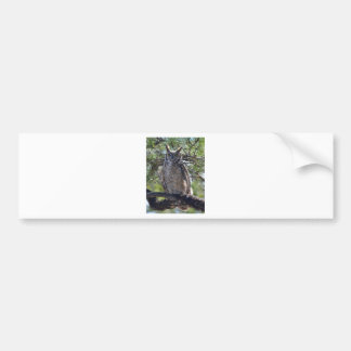 Great Horned Owl in the Tree Bumper Sticker