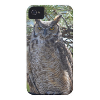 Great Horned Owl in the Tree iPhone 4 Cover