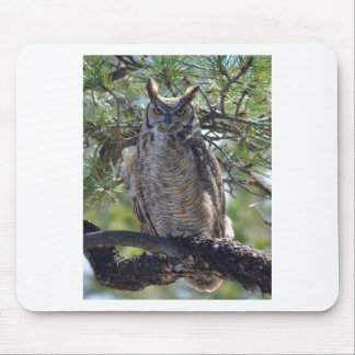 Great Horned Owl in the Tree Mouse Pad