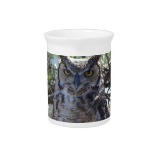 Great Horned Owl in the Tree Pitcher