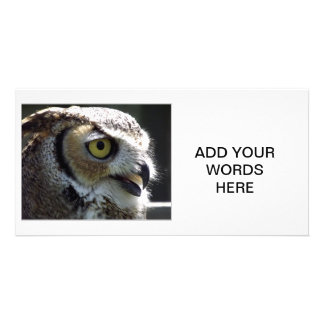 Great Horned Owl Personalized Photo Card