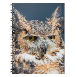 Great Horned Owl Portrait Notebook