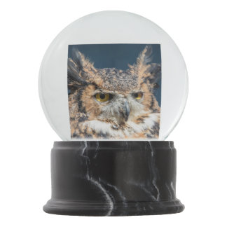 Great Horned Owl Portrait Snow Globe