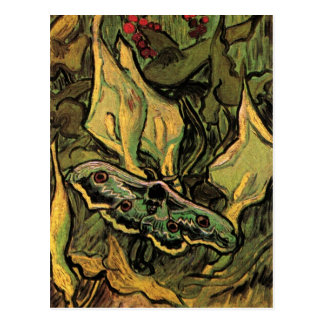 Great Peacock Moth by Vincent van Gogh Postcard