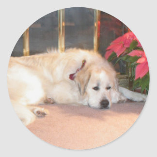 Great pyrenees classic round sticker