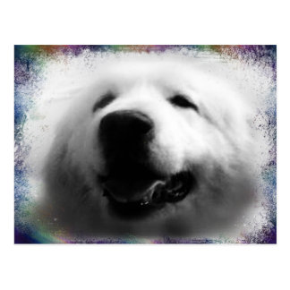 """Great Pyrenees Post Card - """"My Sweet Annie"""""""