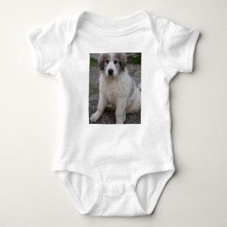 great pyrenees puppy baby bodysuit