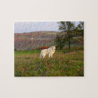 Great Pyrenees Puzzle