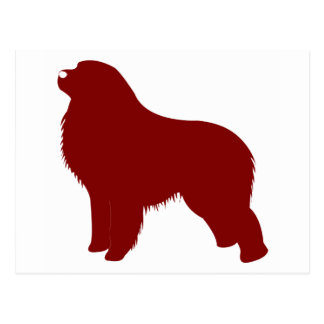 Great Pyrenees (Red) Postcard
