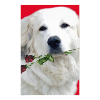 Great Pyrenees with Roses Stationery