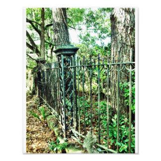 Great Santini Gate Photo