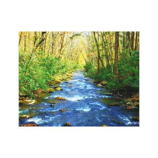 Great Smoky Mountains Creek - Babbling Brook Canvas Print