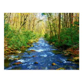 Great Smoky Mountains Creek - Babbling Brook Postcard