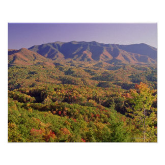 Great Smoky Mountains NP, Tennessee, USA Poster