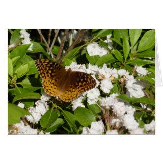 Great Spangled Fritillary on Mountain Laurel Photo Card