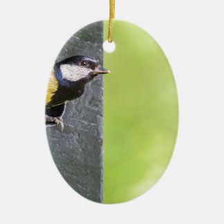 Great tit parent in hole of nest box ceramic ornament