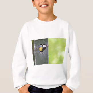Great tit parent in hole of nest box sweatshirt