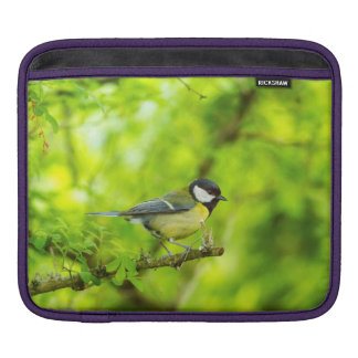 Great tit, parus major iPad sleeve