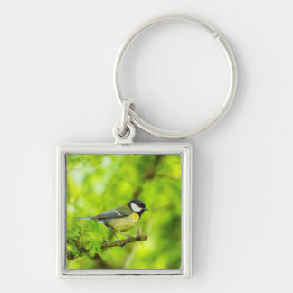 Great tit, parus major keychain